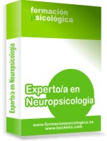 Experto neuropsicologia Online